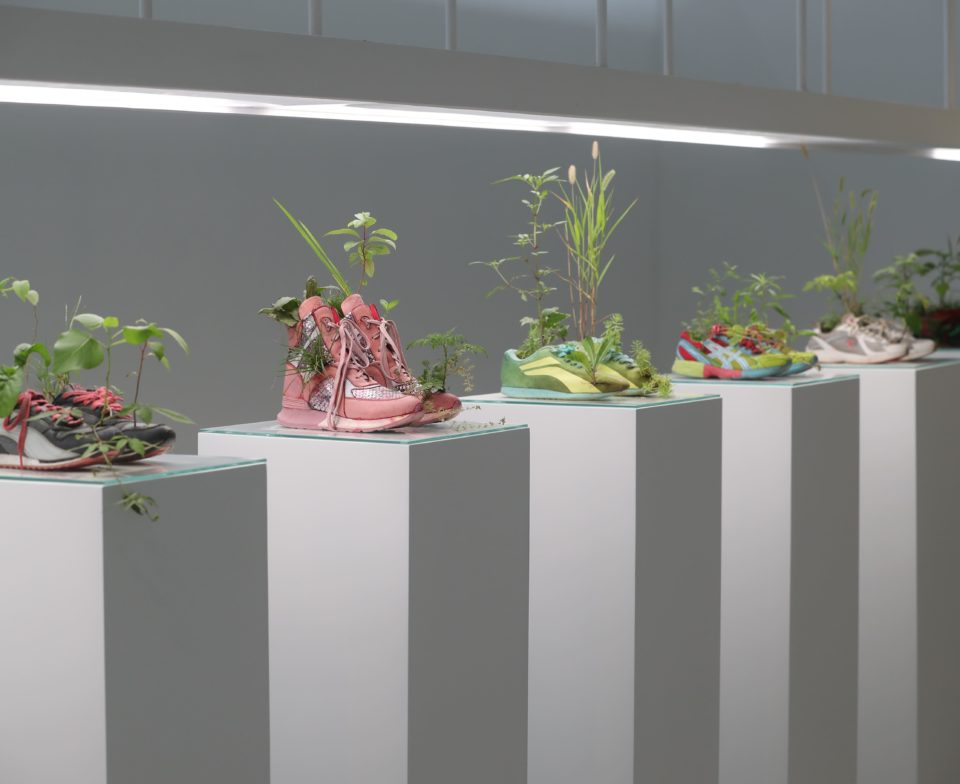 Michel BLAZY Pull Over Time : Running, 2017 / Running Shanghai, 2019 Chaussures de sport, plantes, sol, eau, techniques mixtes 190 x 50 x 50 cm - © Claire Dorn