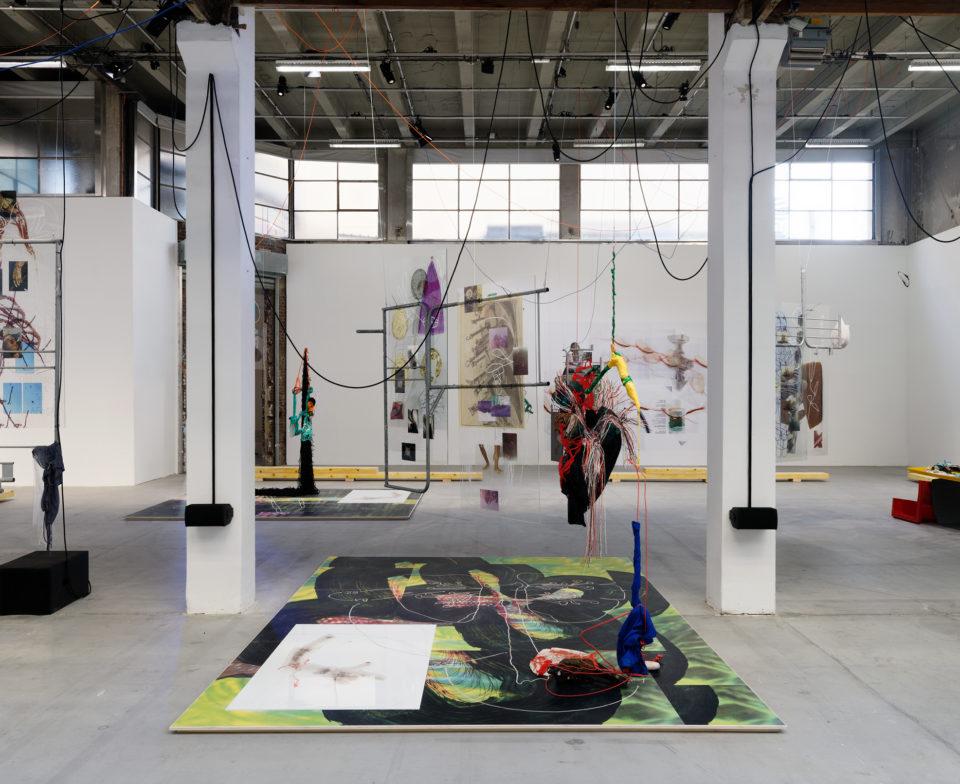 Julien Creuzet, vue de l'exposition au Palais de Tokyo, 2019, Paris